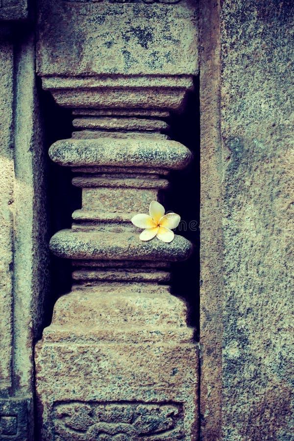 κεντρικό ινδό yogyakarta ναών της Ινδονησίας Ιάβα prambanan prambanan yogyakarta της Ινδονησίας Ιάβα στοκ εικόνες