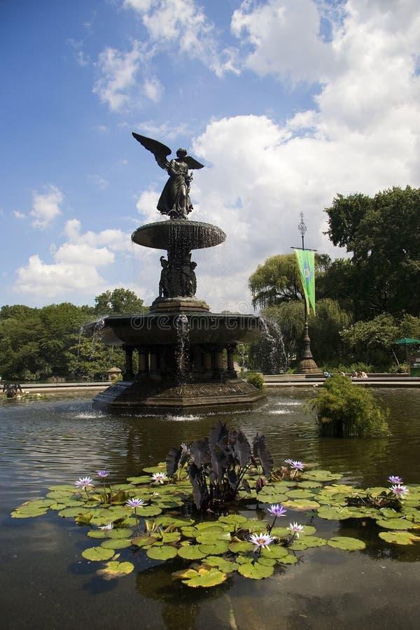 κεντρικό πάρκο πηγών bethesda στοκ εικόνες