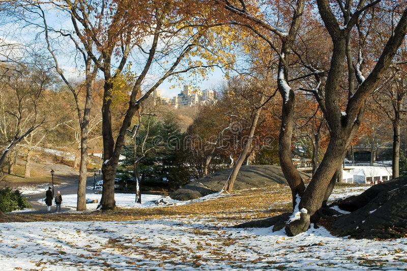 κεντρικό πρώτο χιόνι πάρκων στοκ εικόνες
