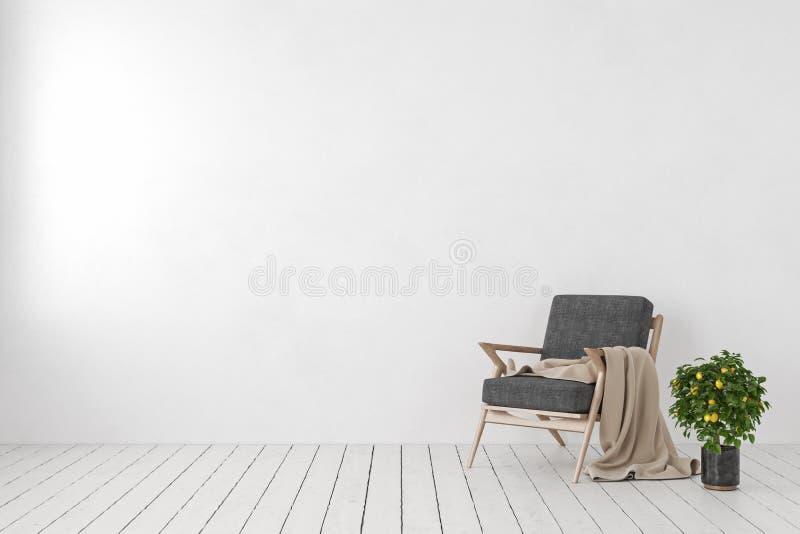 Κενός άσπρος εσωτερικός, κενός τοίχος με την πολυθρόνα σαλονιών, δέντρο λεμονιών εγκαταστάσεων ελεύθερη απεικόνιση δικαιώματος