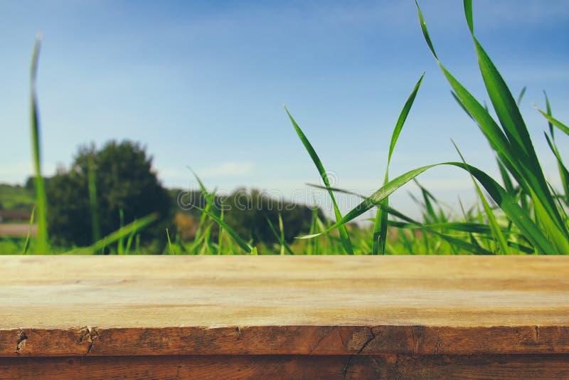 Κενός αγροτικός πίνακας μπροστά από τη χαμηλή άποψη γωνίας της φρέσκιας χλόης επίδειξη προϊόντων και έννοια πικ-νίκ στοκ εικόνα με δικαίωμα ελεύθερης χρήσης