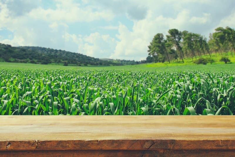 Κενός αγροτικός πίνακας μπροστά από το υπόβαθρο επαρχίας επίδειξη προϊόντων και έννοια πικ-νίκ στοκ εικόνες με δικαίωμα ελεύθερης χρήσης