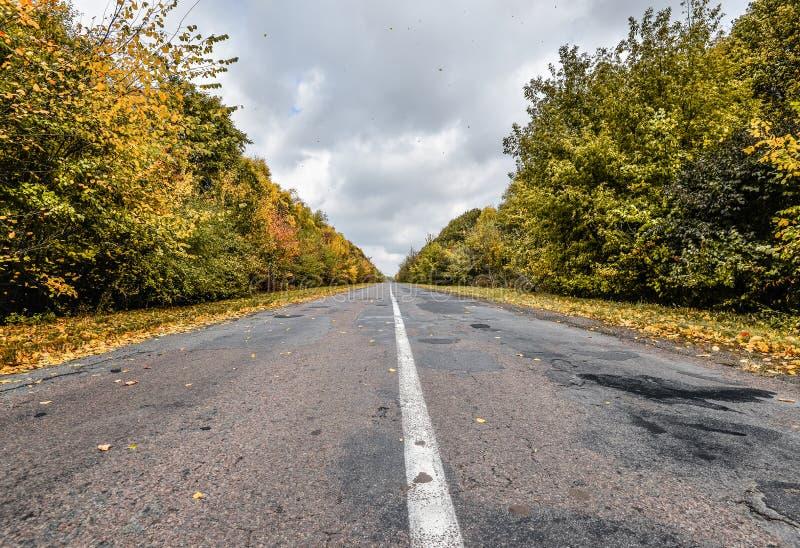 Κενός δρόμος ασφάλτου μέσω των ξύλων φθινοπώρου Σκηνή φθινοπώρου με το δρόμο στο δασικό όμορφο φυσικό κενό δρόμο το φθινόπωρο και στοκ εικόνες