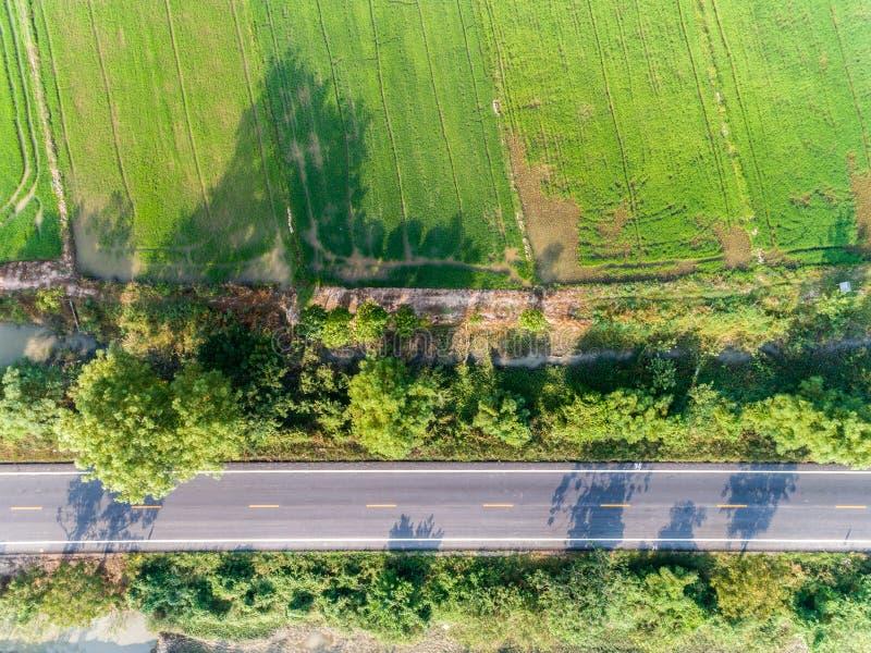 Κενός δρόμος με το πράσινο σχέδιο τομέων ρυζιού από τη τοπ άποψη στοκ φωτογραφίες