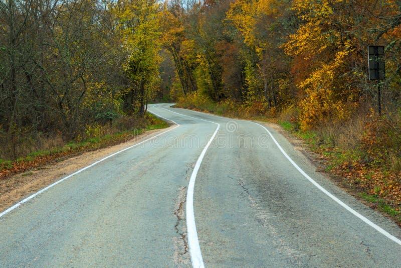 Κενός δρόμος στο δάσος φθινοπώρου στοκ φωτογραφία με δικαίωμα ελεύθερης χρήσης