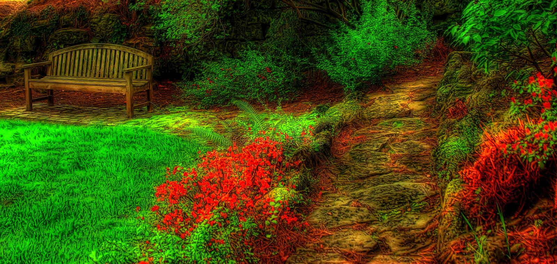 κενός κήπος πάγκων στοκ εικόνες
