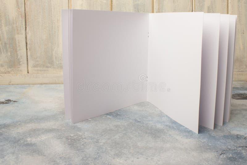 Κενός κατάλογος, περιοδικά, ένα σχεδιάγραμμα βιβλίων στο υπόβαθρο ενός δέντρου στοκ εικόνες με δικαίωμα ελεύθερης χρήσης
