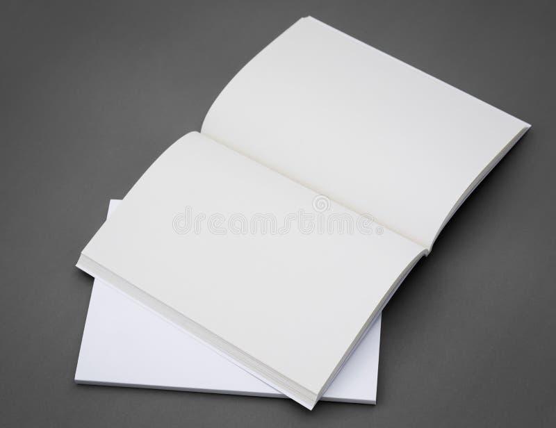 Κενός κατάλογος, φυλλάδιο, περιοδικά στοκ εικόνες με δικαίωμα ελεύθερης χρήσης