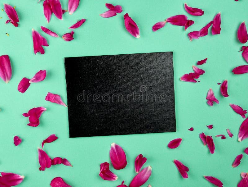 κενός μαύρος πίνακας κιμωλίας σε ένα πράσινο υπόβαθρο μεταξύ των ρόδινων peony πετάλων στοκ εικόνες