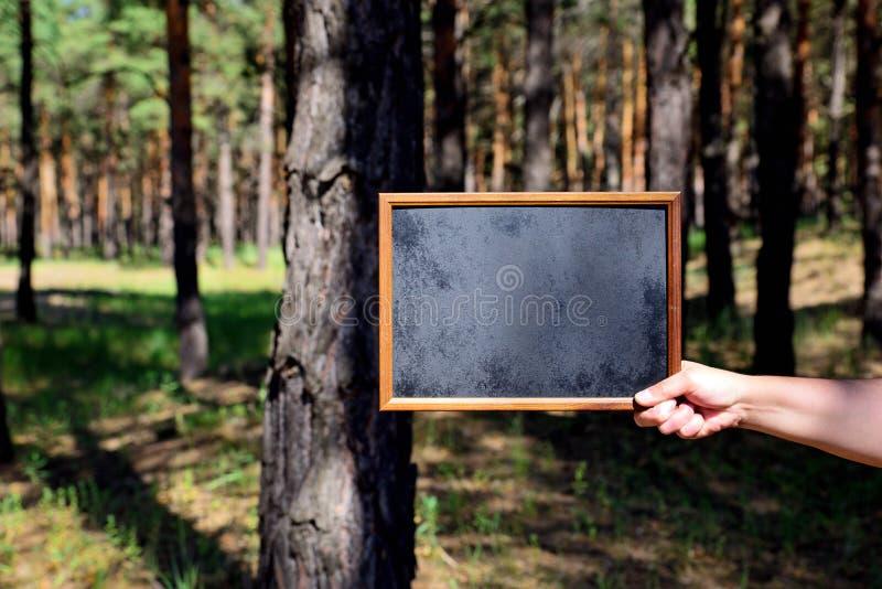 Κενός μαύρος πίνακας κιμωλίας στο δεξή ενός ατόμου στοκ φωτογραφία