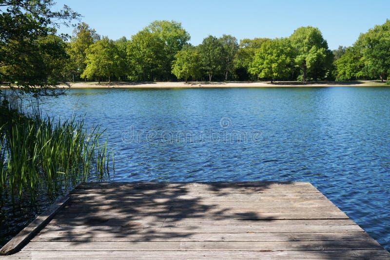 Κενός ξύλινος αποβάθρα ή λιμενοβραχίονας που αγνοεί τη λίμνη στοκ εικόνα