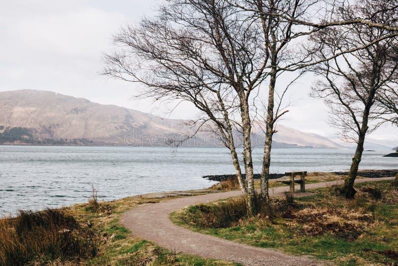 Κενός ξύλινος πάγκος από τη λίμνη Eil, οχυρό William, Σκωτία στοκ εικόνα με δικαίωμα ελεύθερης χρήσης