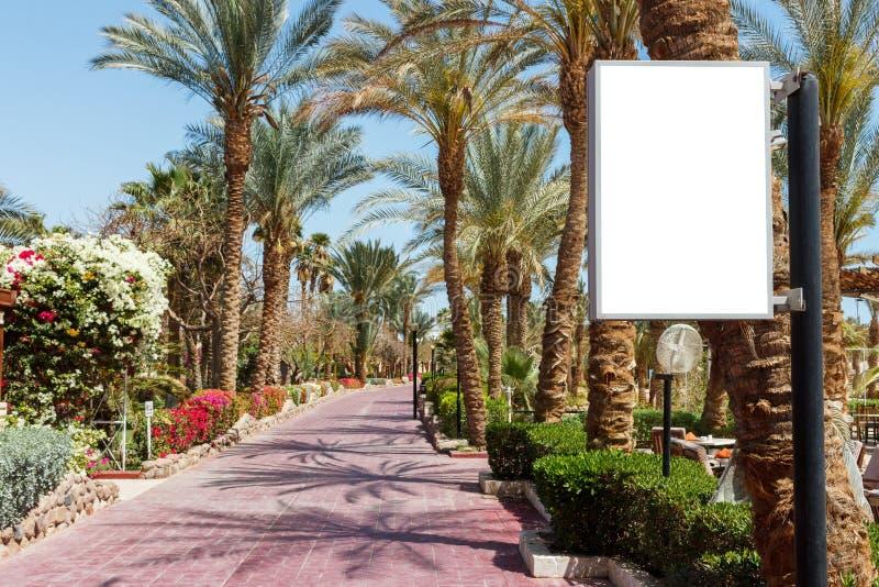 Κενός πλαστός πίνακας διαφημίσεων στο πάρκο Αλέα των φοινικών στο σαφές υπόβαθρο ουρανού στοκ εικόνα με δικαίωμα ελεύθερης χρήσης
