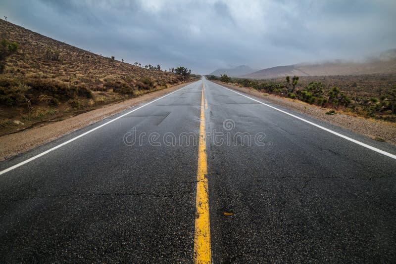 Κενός υγρός δρόμος πεζοδρομίων ασφάλτου ερήμων με την κίτρινη εθνική οδό που χαρακτηρίζει τις γραμμές στοκ εικόνες
