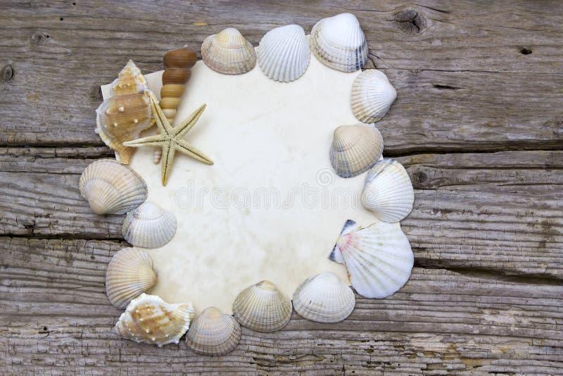 Κενό έγγραφο με τα θαλασσινά κοχύλια στοκ φωτογραφίες