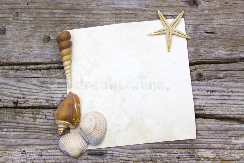Κενό έγγραφο με τα θαλασσινά κοχύλια στοκ εικόνες με δικαίωμα ελεύθερης χρήσης