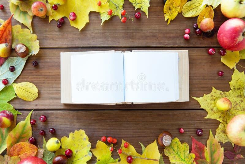Κενό βιβλίο με τα φύλλα, τα φρούτα και τα μούρα φθινοπώρου στοκ εικόνα