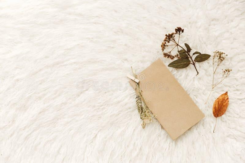 Κενό κενό με το ξηρό λουλούδι Ελάχιστο άνετο σπίτι στοκ εικόνα