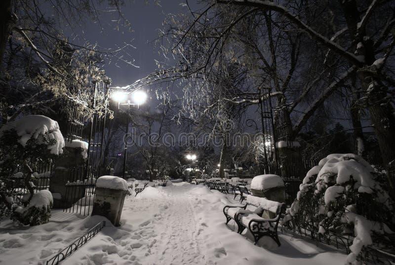 Κενό πάρκο κάτω από το χιόνι κατά τη διάρκεια της χειμερινής κρύας νύχτας στοκ φωτογραφίες