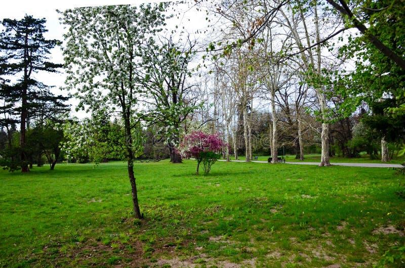 κενό πάρκο στοκ φωτογραφία με δικαίωμα ελεύθερης χρήσης