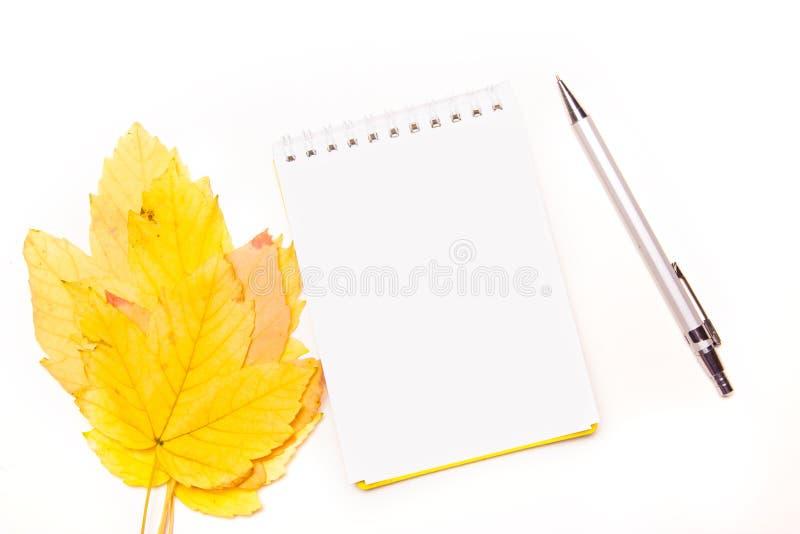 Κενό σημειωματάριο για εγγραφή ή για μια λίστα επιθυμιών με πένα σε φθι στοκ εικόνες