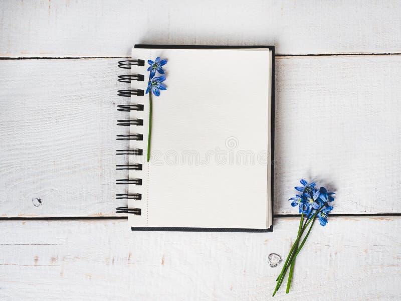 Κενό σημειωματάριο για τα συγχαρητήρια στοκ εικόνα