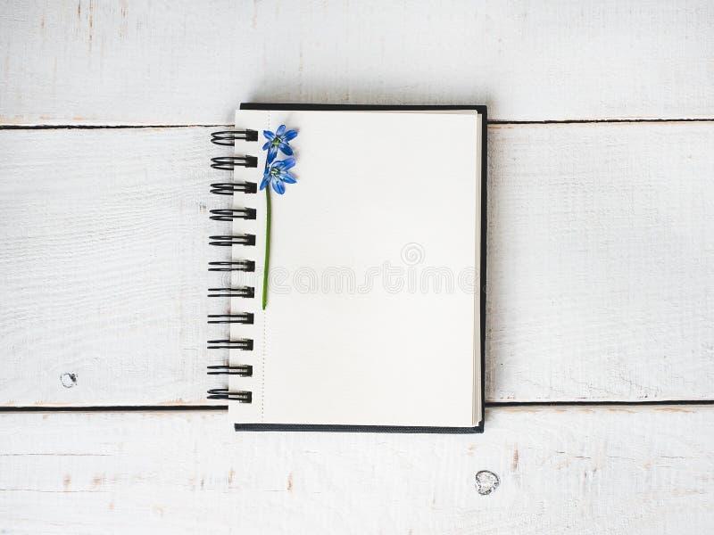 Κενό σημειωματάριο για τα συγχαρητήρια στοκ φωτογραφία με δικαίωμα ελεύθερης χρήσης
