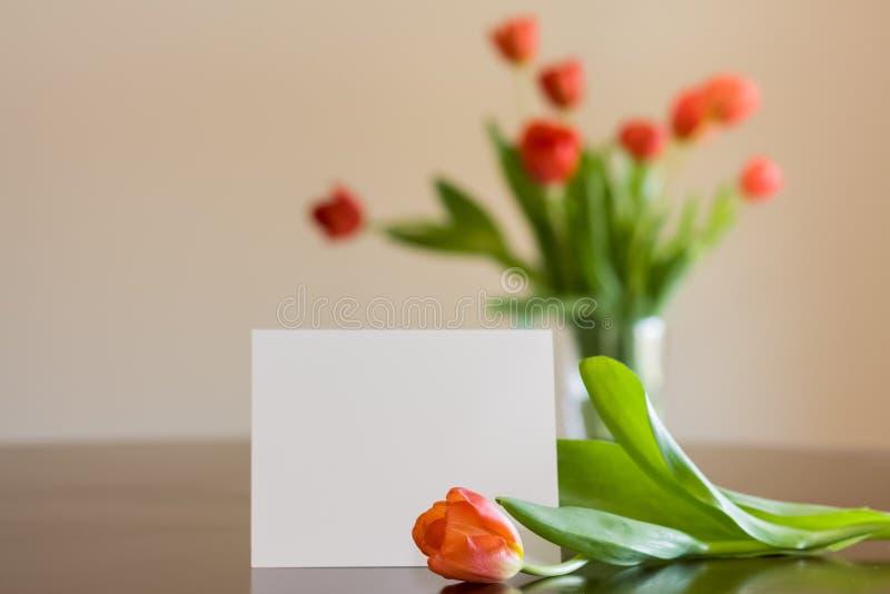 Κενό Notecard με τις τουλίπες στοκ εικόνα