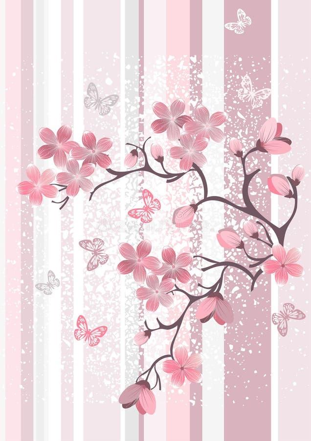 κεράσι ιαπωνικά ανθών διανυσματική απεικόνιση