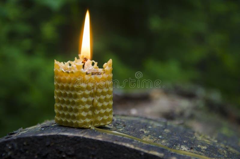 Κερί μελισσοκηρού στοκ φωτογραφία με δικαίωμα ελεύθερης χρήσης