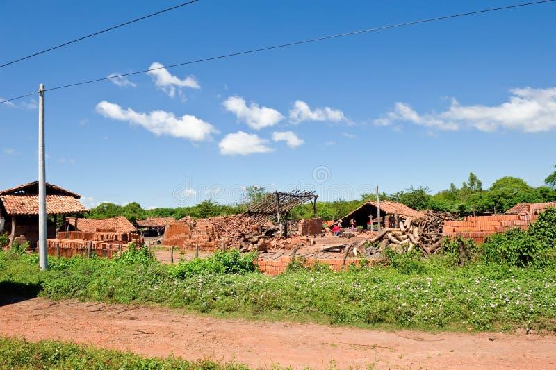 κεραμίδι στεγών της Νικαράγουας εργοστασίων στοκ εικόνες με δικαίωμα ελεύθερης χρήσης