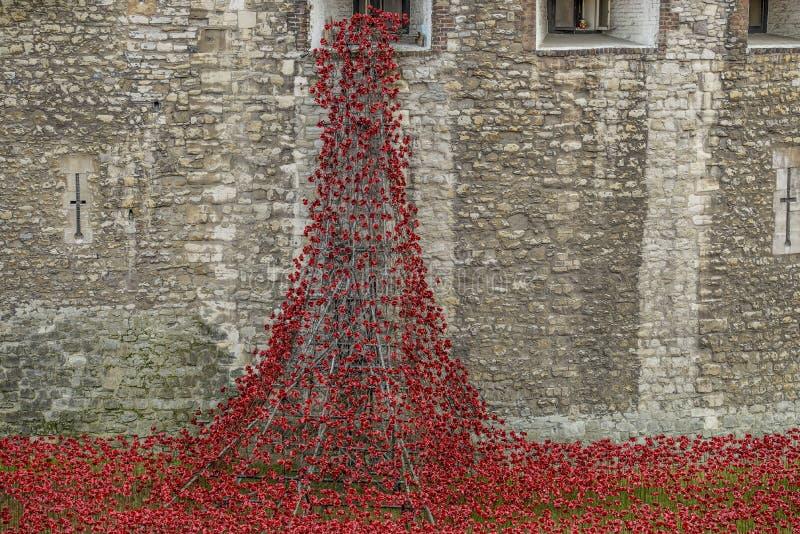 Κεραμικές παπαρούνες στον πύργο του Λονδίνου στοκ φωτογραφία με δικαίωμα ελεύθερης χρήσης