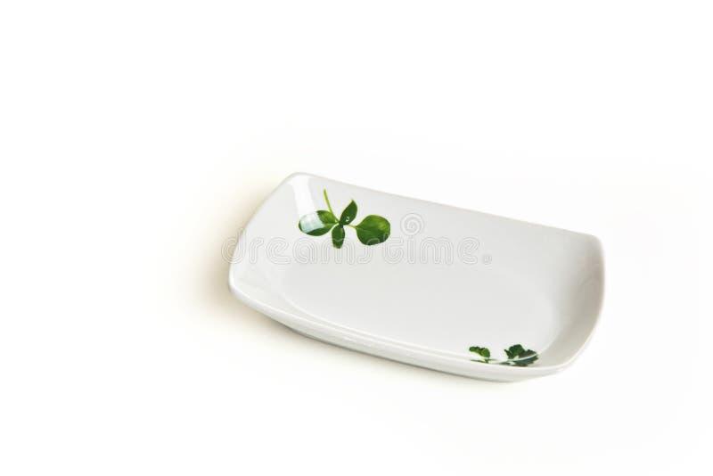 Κεραμικό πιάτο στο άσπρο υπόβαθρο στοκ εικόνα