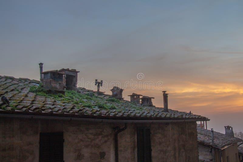 Κεραμωμένη στέγη του παλαιού κτηρίου στο φως ηλιοβασιλέματος Ιταλία Σιένα Τοσκάνη στοκ φωτογραφία