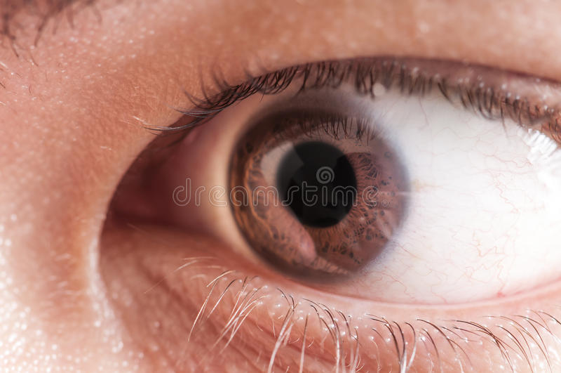 Κερατοειδής χιτώνας ίριδων μαθητών ματιών ατόμων στοκ εικόνες