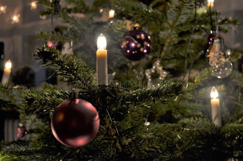 Κεριά που λάμπουν σε ένα χριστουγεννιάτικο δέντρο με τις πορφυρές διακοσμήσεις στοκ εικόνες με δικαίωμα ελεύθερης χρήσης
