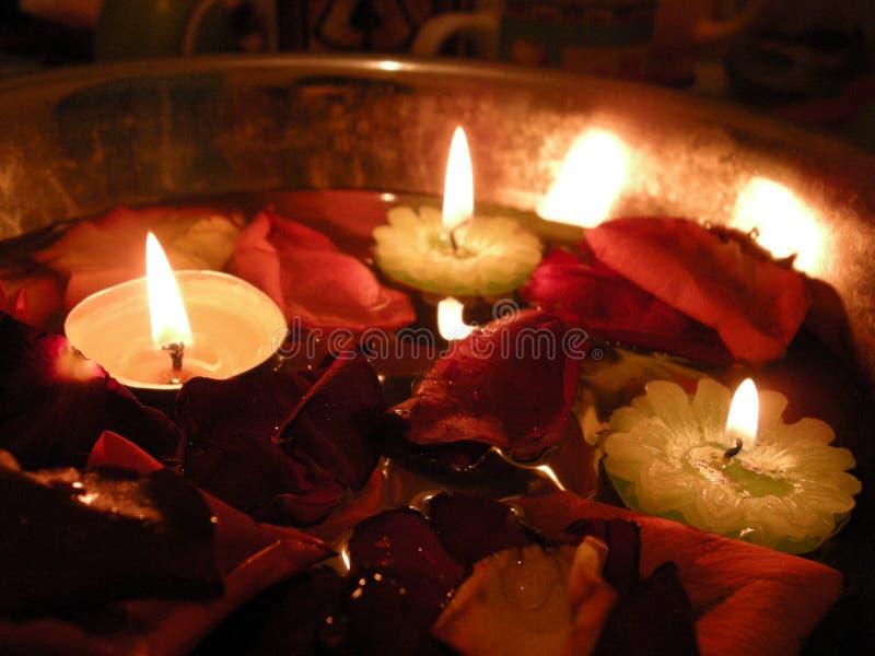 Κεριά ραχών στα ροδαλά πέταλα στοκ φωτογραφία με δικαίωμα ελεύθερης χρήσης