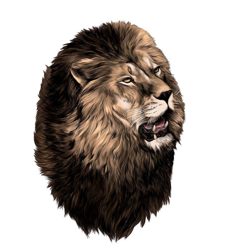 Κεφάλι λιονταριών με το ανοικτό στόμα που κοιτάζει στην πλευρά διανυσματική απεικόνιση
