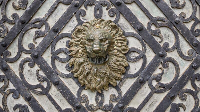 Κεφάλι μετάλλων του λιονταριού στην ξύλινη πόρτα στοκ εικόνες