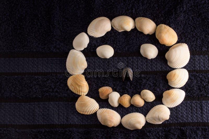 Κεφάλι που ευθυγραμμίζεται στρογγυλό με τα κοχύλια θάλασσας στοκ φωτογραφίες