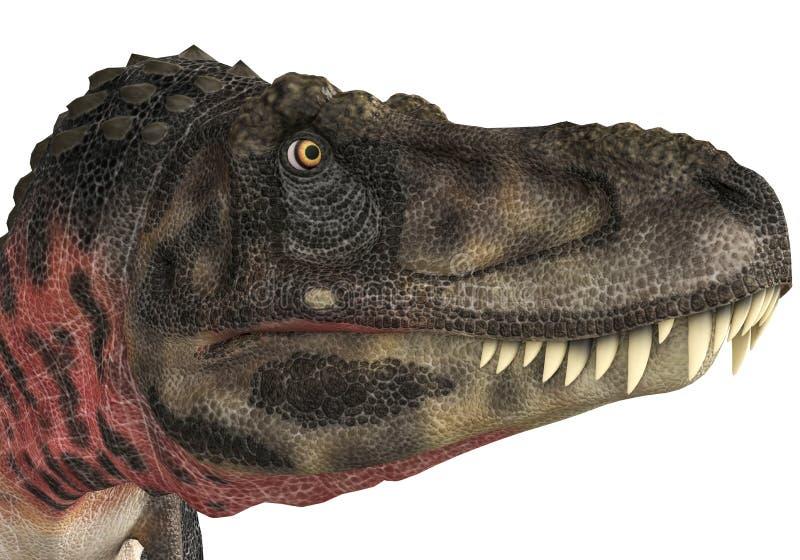 Κεφάλι Tarbosaurus απεικόνιση αποθεμάτων