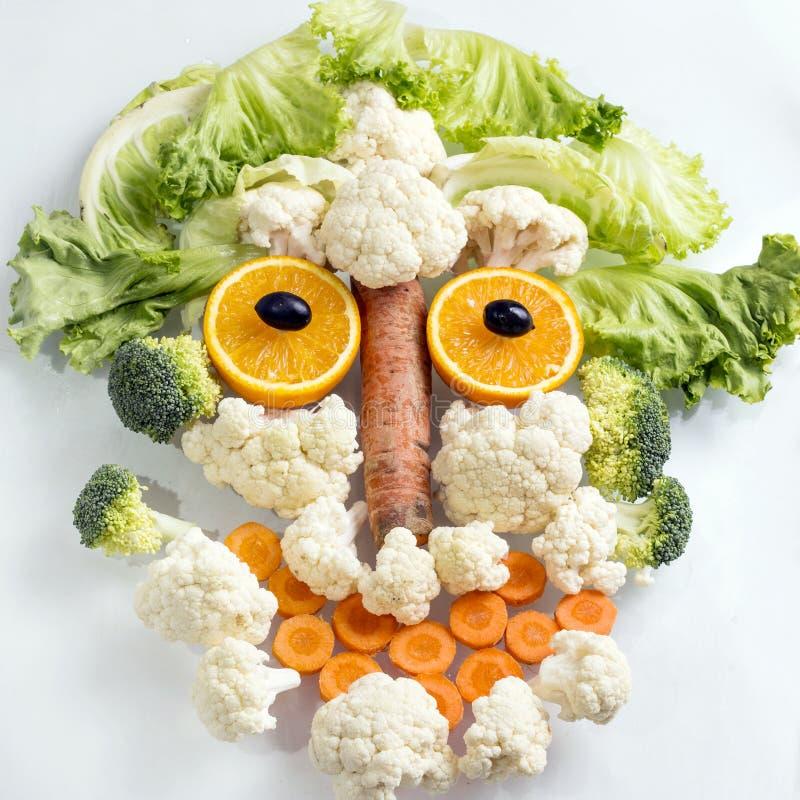 Κεφάλι Vegan στοκ φωτογραφία με δικαίωμα ελεύθερης χρήσης
