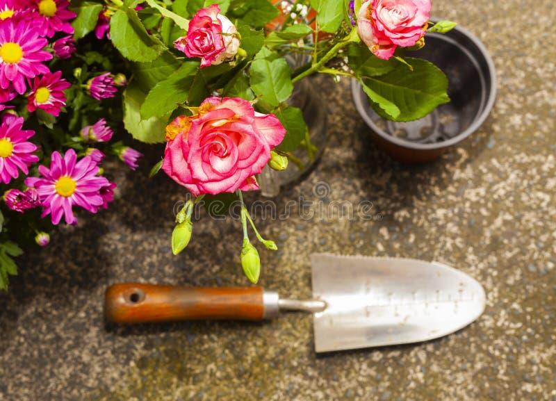 Κηπουρική με τα εγχώρια οργανικά λαχανικά και τα λουλούδια στοκ φωτογραφία με δικαίωμα ελεύθερης χρήσης