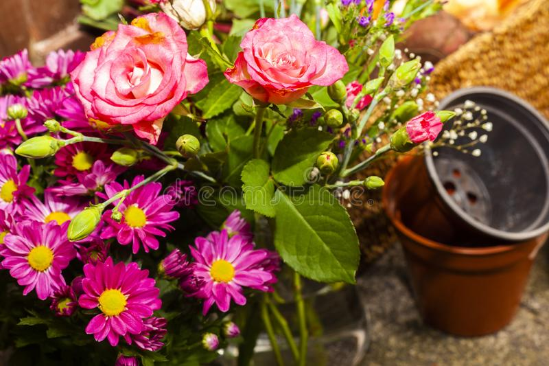 Κηπουρική με τα εγχώρια οργανικά λαχανικά και τα λουλούδια στοκ εικόνες
