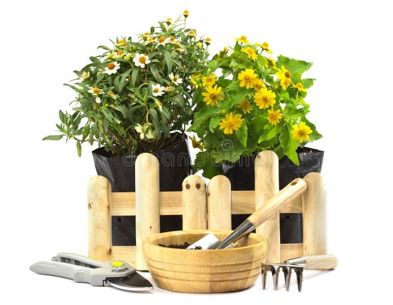 Κηπουρική 'Οικωών στοκ εικόνες