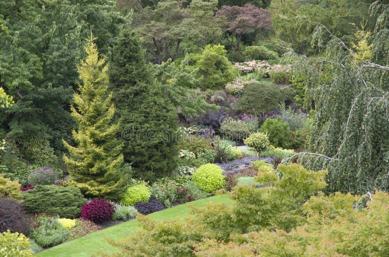κηπουρική σχεδίου στοκ φωτογραφία με δικαίωμα ελεύθερης χρήσης