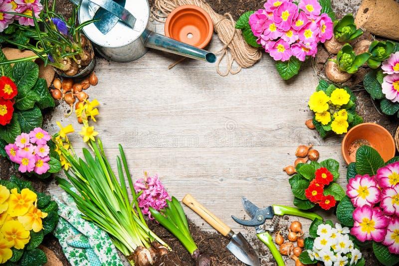 Κηπουρική στοκ εικόνα με δικαίωμα ελεύθερης χρήσης