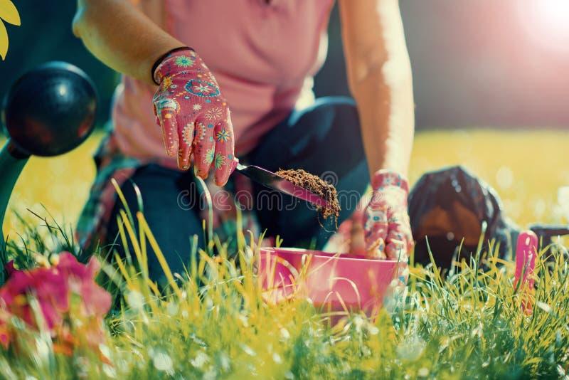 Κηπουρική στοκ φωτογραφία με δικαίωμα ελεύθερης χρήσης