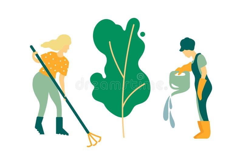 Κηπουροί γυναικών που συμμετέχονται στη φύτευση δέντρων Ποτίζοντας και καθαρίζοντας εγκαταστάσεις Άνοιξη εργασίας και θερινή περί διανυσματική απεικόνιση