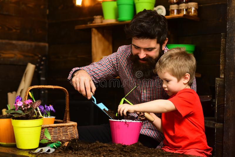 Πατέρας και γιος Ημέρα πατέρων Οικογενειακή ημέρα Θερμοκήπιο Πότισμα προσοχής λουλουδιών Εδαφολογικά λιπάσματα κηπουροί με την άν στοκ εικόνα με δικαίωμα ελεύθερης χρήσης